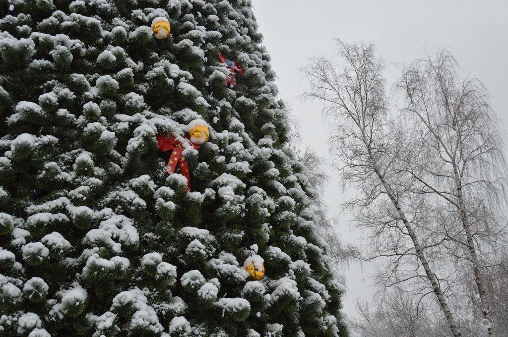 Новогодние развлечения в Нижнем Новгороде - фото 1