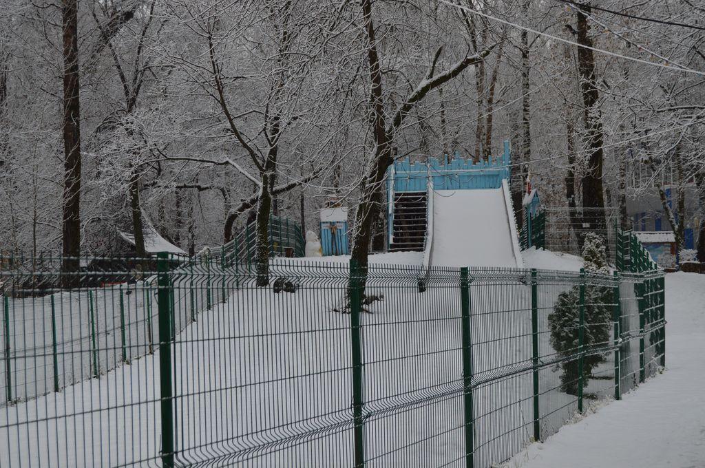 Новогодние развлечения в Нижнем Новгороде - фото 3