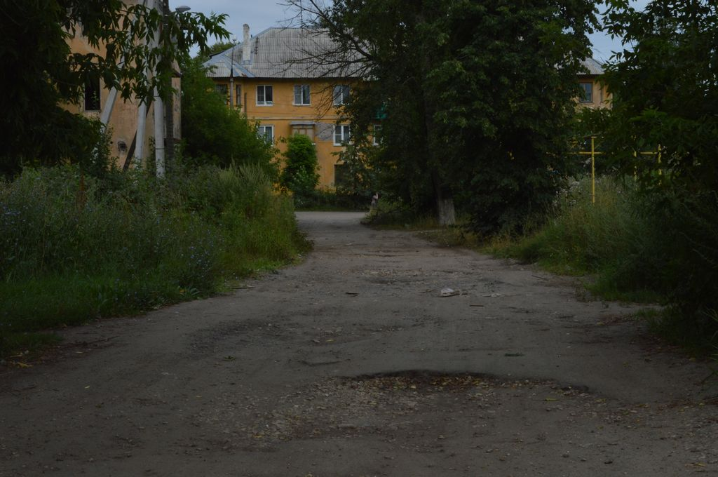 Чей двор? - фото 11