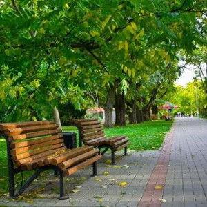 Сквер им. Свердлова хотят включить в федеральную программу по благоустройству на 2018 год - фото
