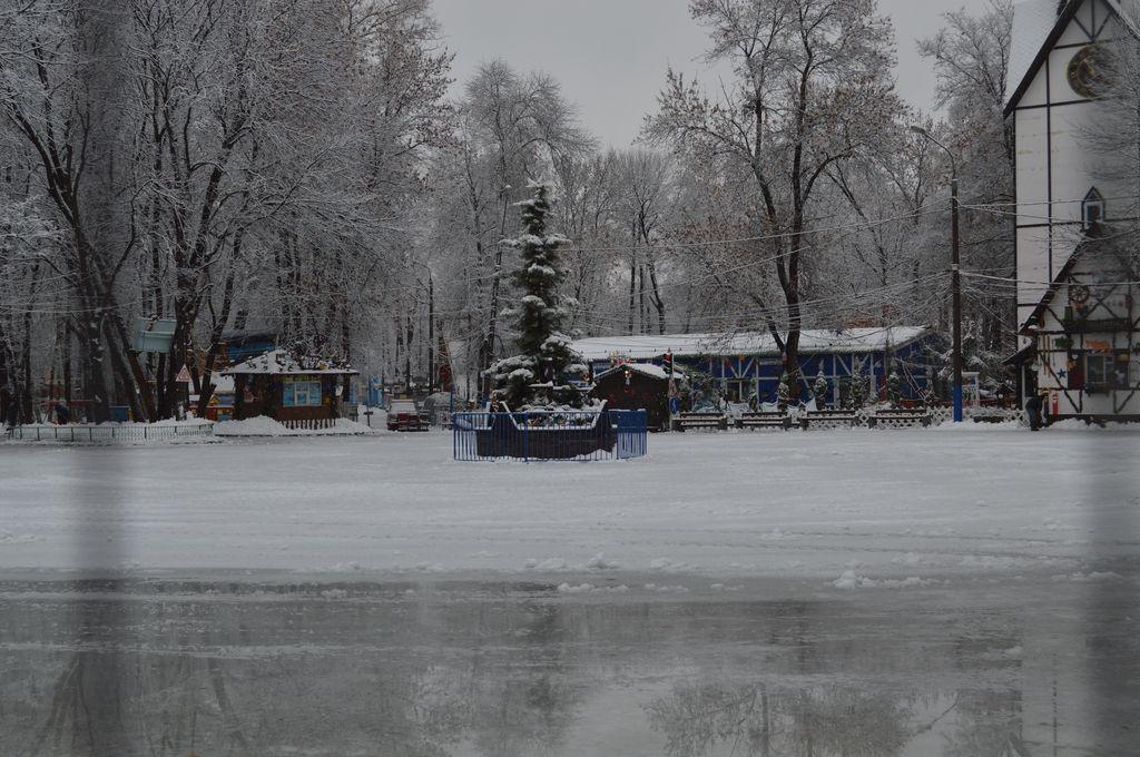 Новогодние развлечения в Нижнем Новгороде - фото 4