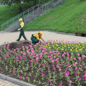 Парк на Стрелке нижегородцы смогут посетить уже в мае - фото
